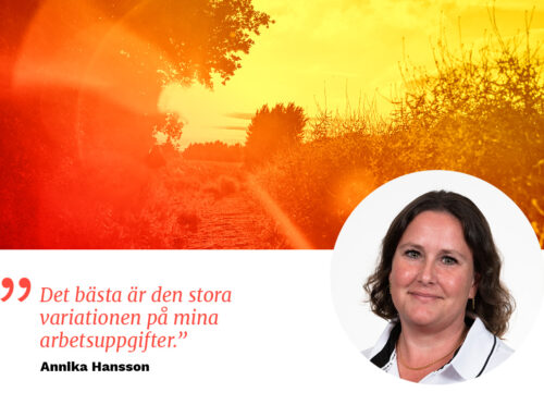 Medarbetarporträtt, Solkraft Sverige